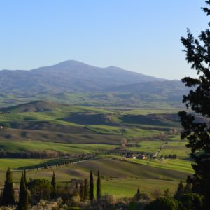 Pecorino di Pienza Cheese Tour
