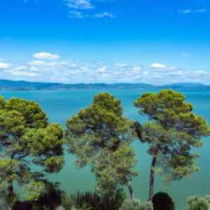 Trasimeno Lake boat tour